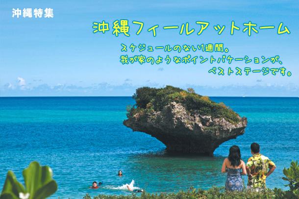 沖縄の画像 p1_26